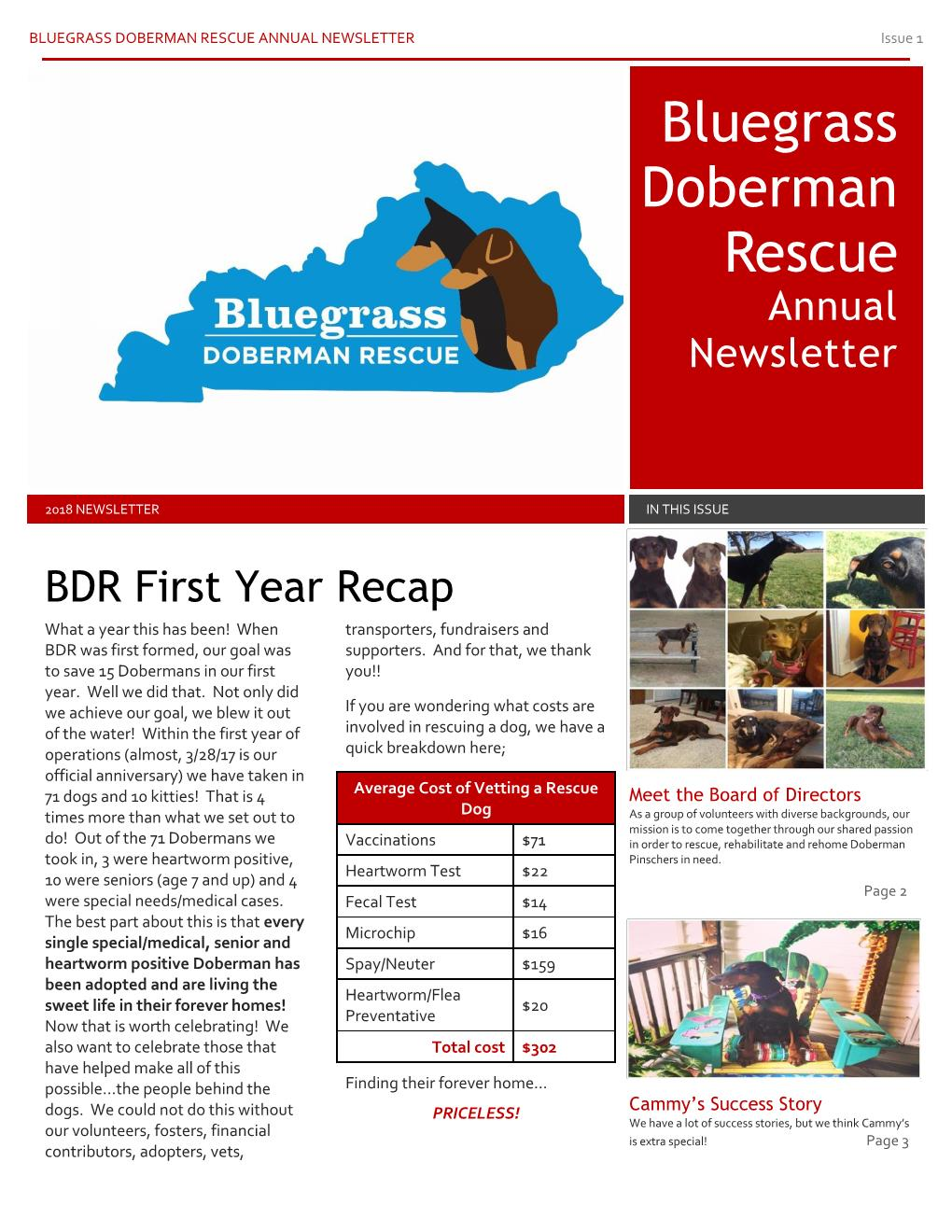 2018 BDR Newsletter Page 001